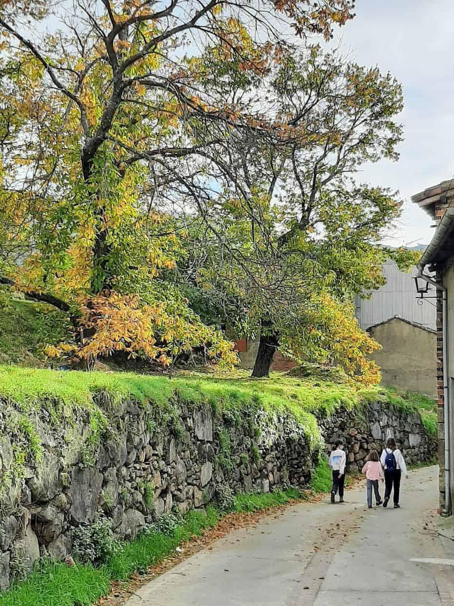El Arenal en otoño
