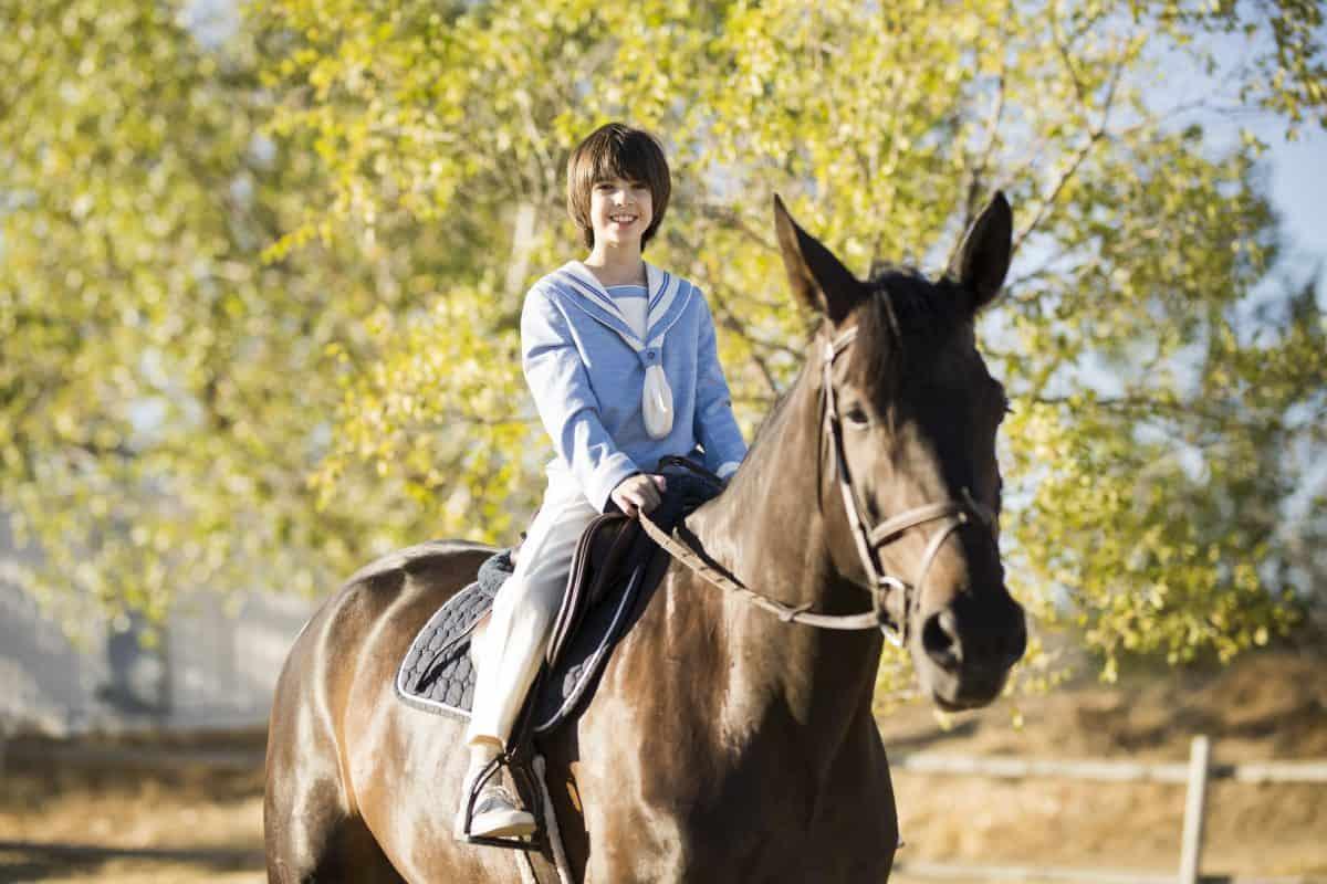 caballo comunión