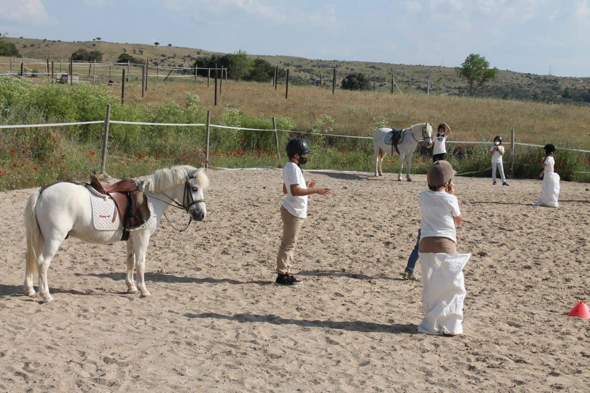 gymkana a caballo